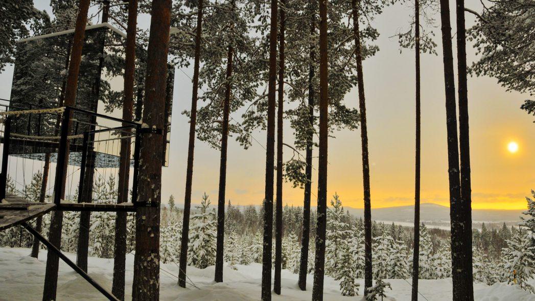 Harads Baumhotel Luleå