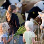 Urlaub mit Kindern Schweden