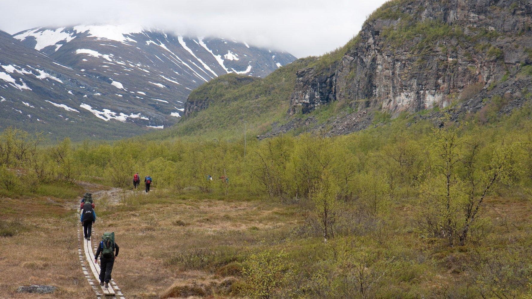 Wandern in Schweden Fjäll Wanderwege