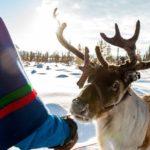 Urlaub in Lappland Nordschweden