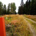 Värmland Wanderweg